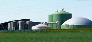 Albioma's plans for more biogas plants