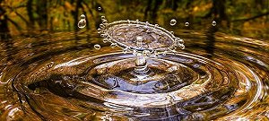 Yorkshire Water appoints BarhaleDoosan JV and Stantec to wetland project