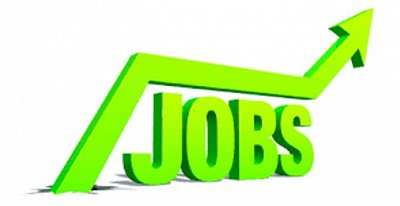 Placements in permanent jobs rise in engineering and IT